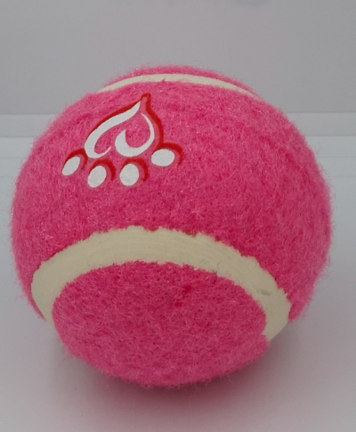 Bolas de Tenis para Mascota